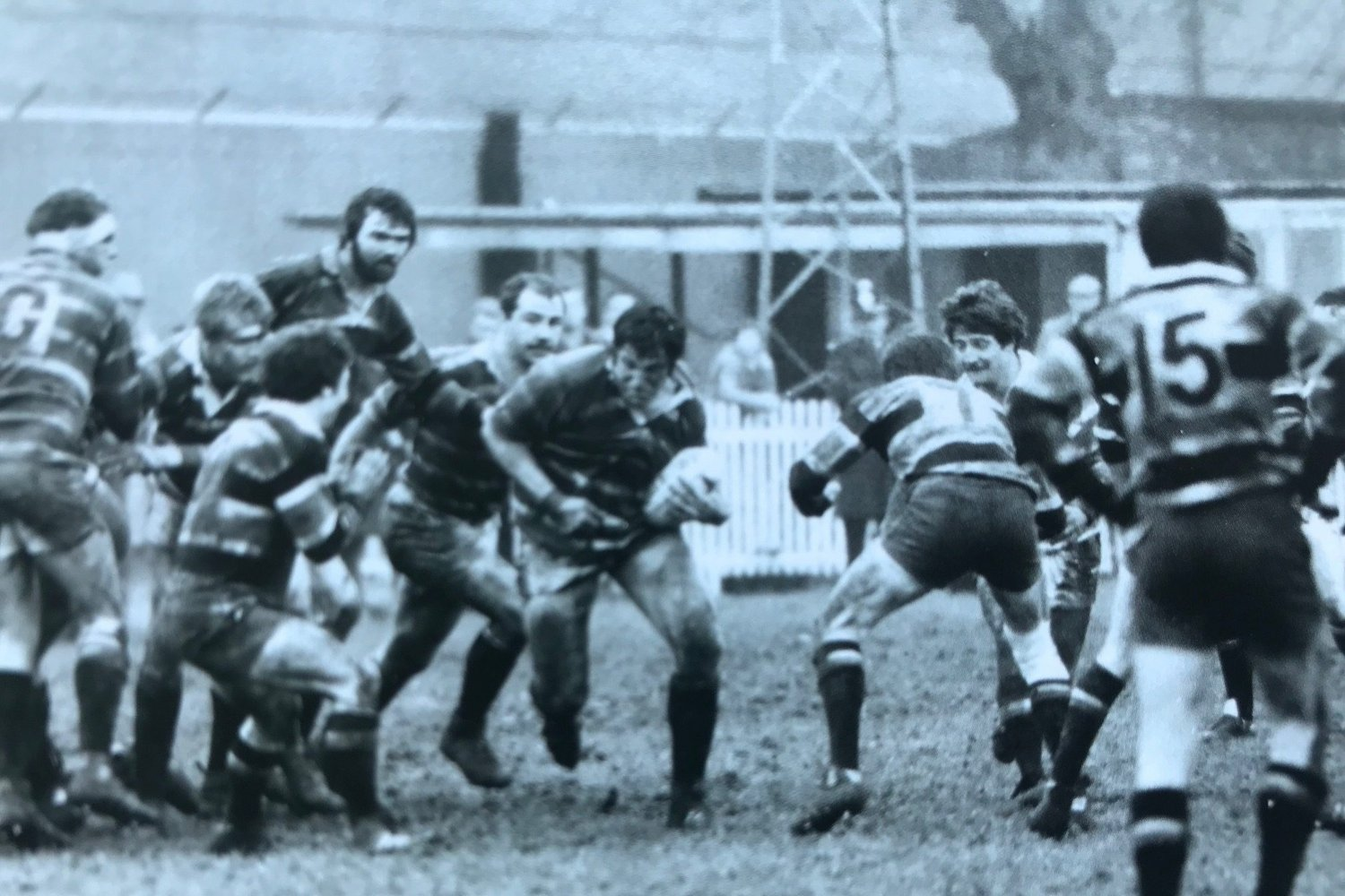 Tigers dispose of Saints at Franklin's Garden in the Cup in 1982