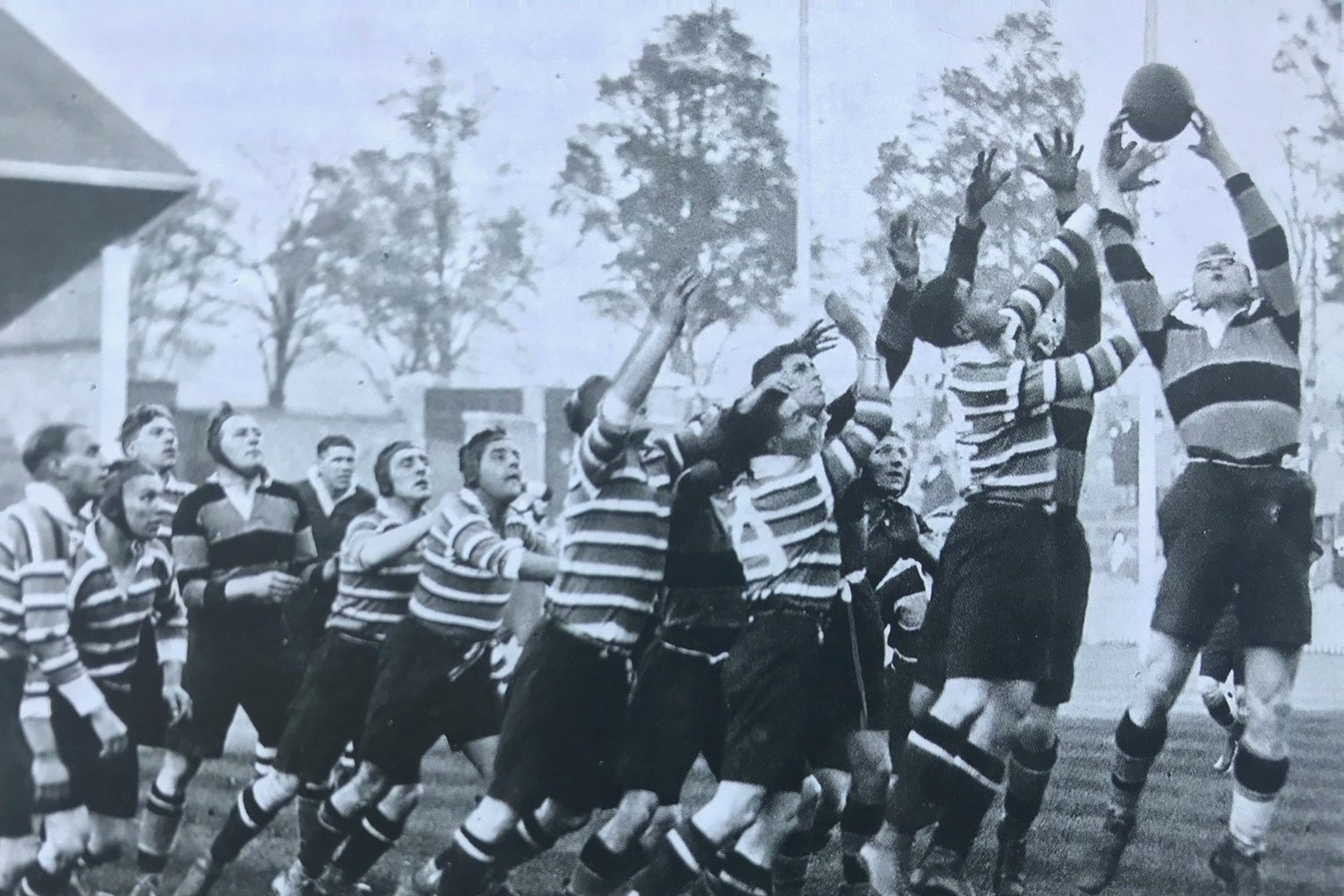 Tigers Saints 1931