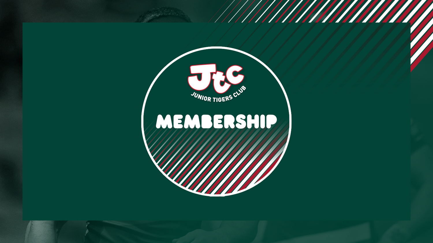 Leicester Tigers Junior Tigers Membership
