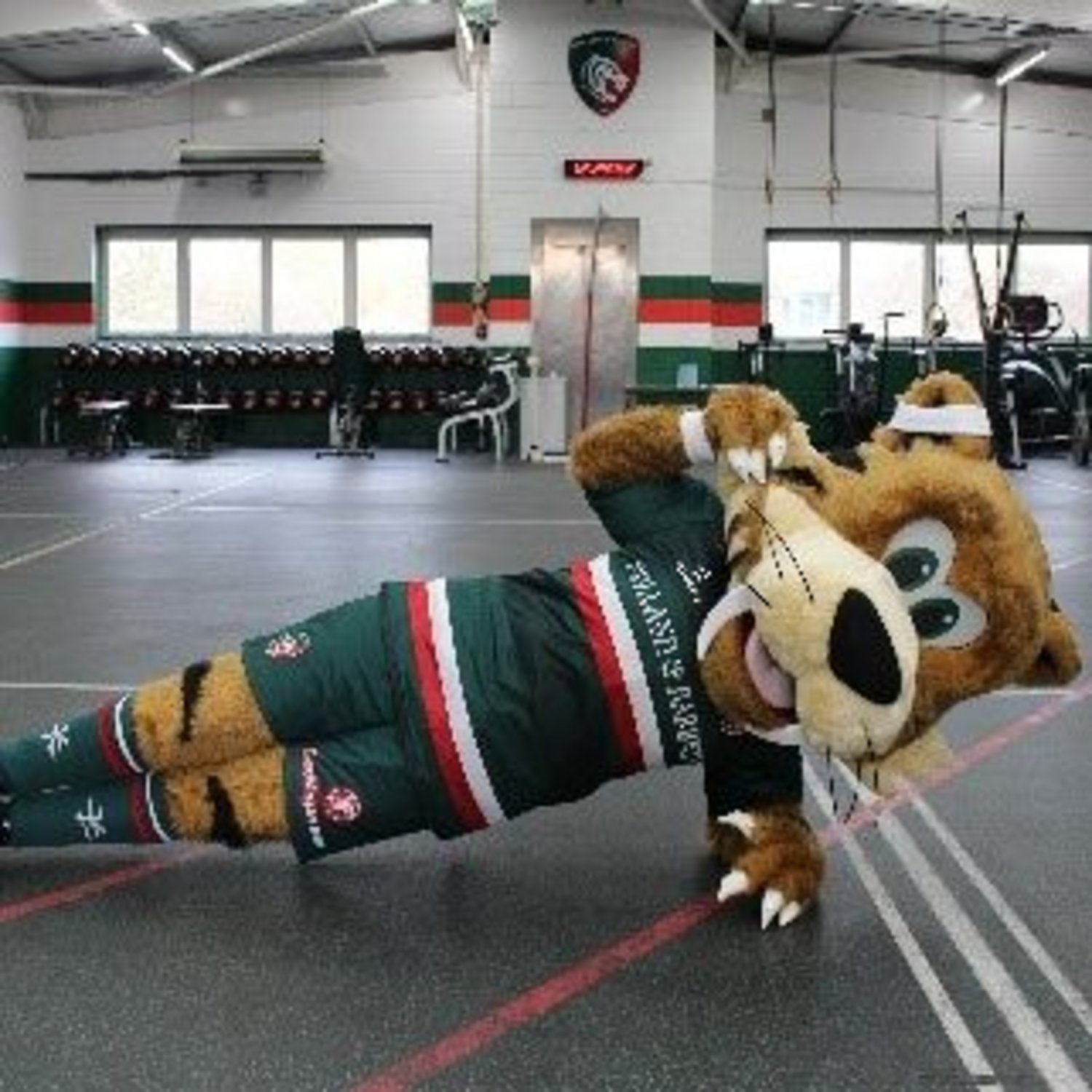 Welford Fit Fans