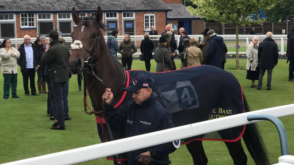 The two-year-old came in a respectable eighth in a large field at his first race at Leicester Racecourse.